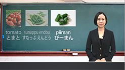 農業研修生・技能実習生向け「農業技能実習生eラーニング」中国語字幕版 オンライン教材